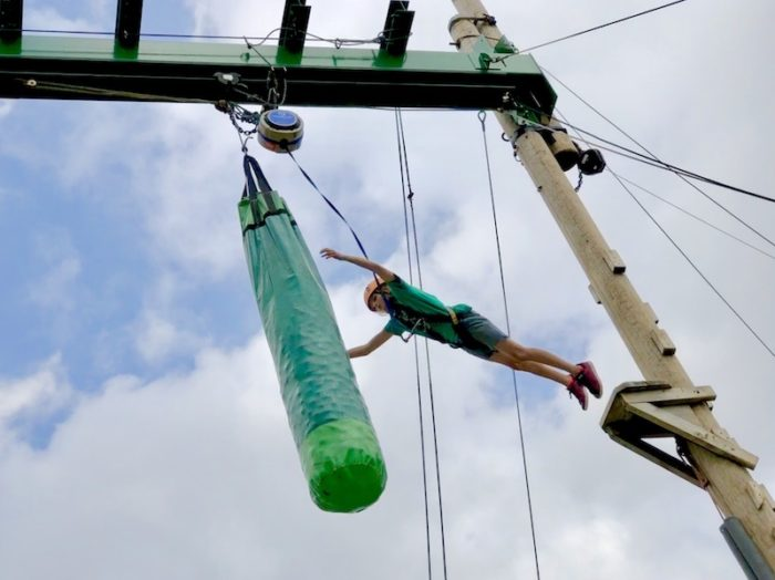 Leap of Faith at Wild Place Project